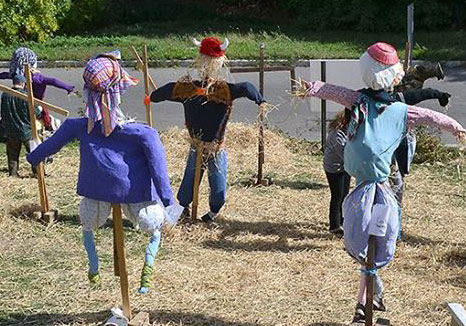 Image result for scarecrow day at meadowland museum